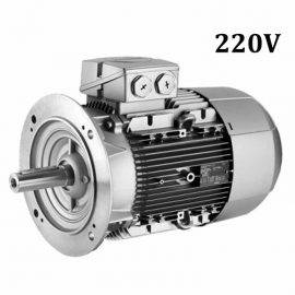 Motor Eléctrico Monofásico B5